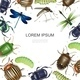 Realistic Insects Colorful Template - GraphicRiver Item for Sale