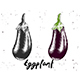 Hand Drawn Sketch Of Eggplant - GraphicRiver Item for Sale
