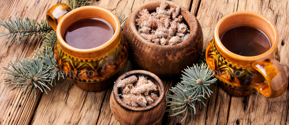 Tea with pine buds - Stock Photo - Images