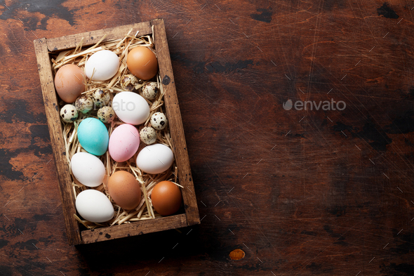 Hen and quail eggs - Stock Photo - Images