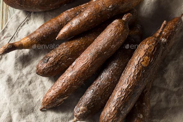 Raw Brown Organic Yucca Root Stock Photo by bhofack2   PhotoDune