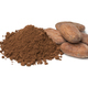 Heap of whole cocoa beans and cocoa powder - PhotoDune Item for Sale