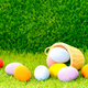 Easter eggs in the basket on green grass-6 - PhotoDune Item for Sale