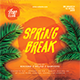 Spring Break Dj Party Flyer - GraphicRiver Item for Sale