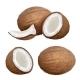 Coconut Realistic - GraphicRiver Item for Sale