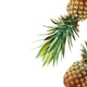 Pineapple on background - PhotoDune Item for Sale
