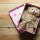 Teddy Bear - PhotoDune Item for Sale