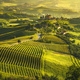 Langhe vineyards sunset panorama, Grinzane Covour, Piedmont, Ita - PhotoDune Item for Sale