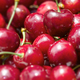 Cherries closeup - PhotoDune Item for Sale