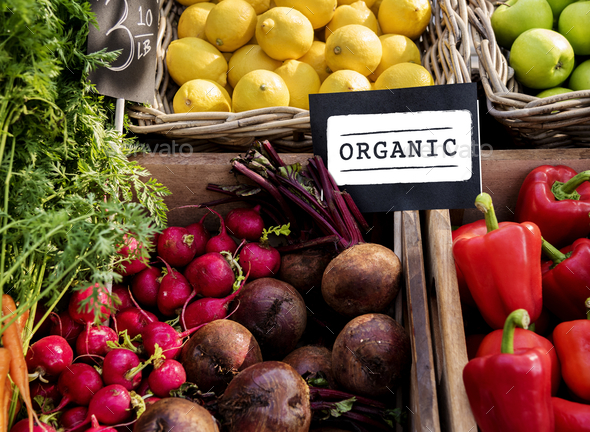 Fresh Natural Organic Product Concept - Stock Photo - Images
