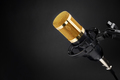 Gold condenser microphone on black - PhotoDune Item for Sale