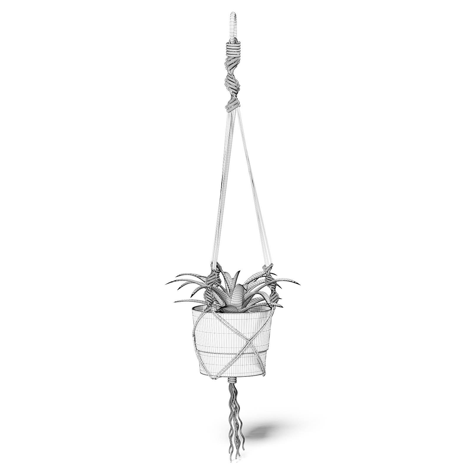 Plant in White Hanging Pot 3D Model