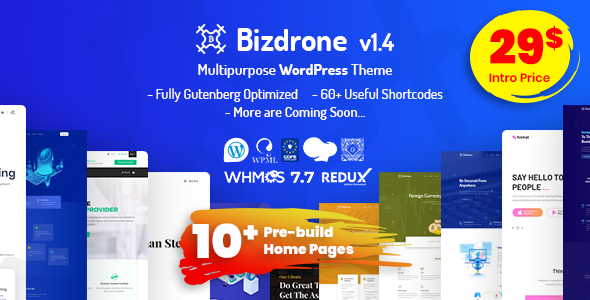 01_bizdrone.__large_preview