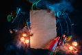 Magical scroll template for ad or certificate. Blank parchment with candles and potions. Dark still - PhotoDune Item for Sale