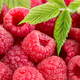 Ripe raspberries with leaves close-up as a background. - PhotoDune Item for Sale