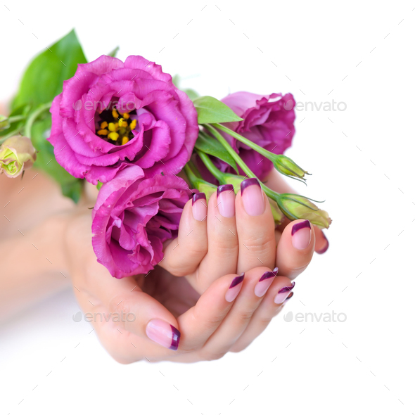 Hands of a woman with pink french manicure and flowers eustoma o - Stock Photo - Images