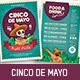 Cinco De Mayo Flyers - GraphicRiver Item for Sale