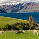 Panoramic photos of Lake Hawea and mountains, South Island, New - PhotoDune Item for Sale