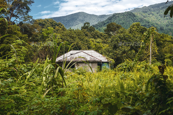 BORNEO / SARAWAK / MALAYSIA / JUNE 2014: Isolated house in the m - Stock Photo - Images