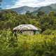 BORNEO / SARAWAK / MALAYSIA / JUNE 2014: Isolated house in the m - PhotoDune Item for Sale