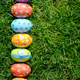 Easter eggs lying on green spring grass arranged in one lane. Sp - PhotoDune Item for Sale
