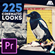 Cinematic Looks and Color Correction Pack - Premiere - VideoHive Item for Sale
