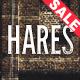 Hares - A Stylish WordPress Theme - ThemeForest Item for Sale