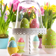 Festive holiday table with fresh flowers and Easter eggs - PhotoDune Item for Sale