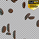 Coffee Beans Falling - Alpha Channel - VideoHive Item for Sale