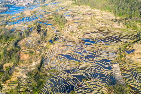 aerial view of beautiful yuanyang terraced fields - Stock Photo - Images
