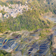 beautiful yuanyang hani terraced field landscape - PhotoDune Item for Sale