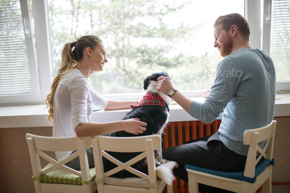Beautiful couple enjoying companion of their dog at home - Stock Photo - Images