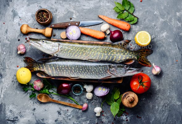 Fish pike on the kitchen board - Stock Photo - Images