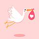 Stork - Baby Birthday Opener - VideoHive Item for Sale