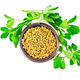 Fenugreek with green leaves in bowl on top - PhotoDune Item for Sale