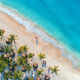 Aerial view of umbrellas, palms on the sandy beach and sea - PhotoDune Item for Sale