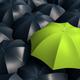 Pink umbrella between black umbrellas. Not like many. 3d rendering - PhotoDune Item for Sale