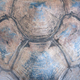 Turtle carapace texture - PhotoDune Item for Sale