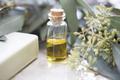 Eucalyptus Oil in Bottle - PhotoDune Item for Sale