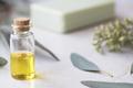 Fresh Eucalyptus Oil - PhotoDune Item for Sale