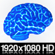 Isolated Human Brain Glowing Xray Concept - VideoHive Item for Sale