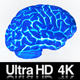4K Isolated Human Brain Glowing Xray Concept - VideoHive Item for Sale