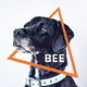 Bee - Animal & Pet Services PowerPoint Template - GraphicRiver Item for Sale