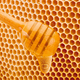 Honey dripping from dipper on background honeycomb - PhotoDune Item for Sale