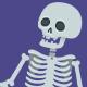 Cartoon Skeleton Pack - VideoHive Item for Sale