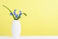 Blue scilla flowers in vase on shelf near wall - PhotoDune Item for Sale