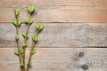 Branches with green spring buds on wooden background - PhotoDune Item for Sale