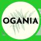 Ogania - Organic & Food WooCommerce WordPress Theme