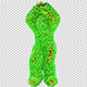 Green Hairy Dancing Dude - VideoHive Item for Sale