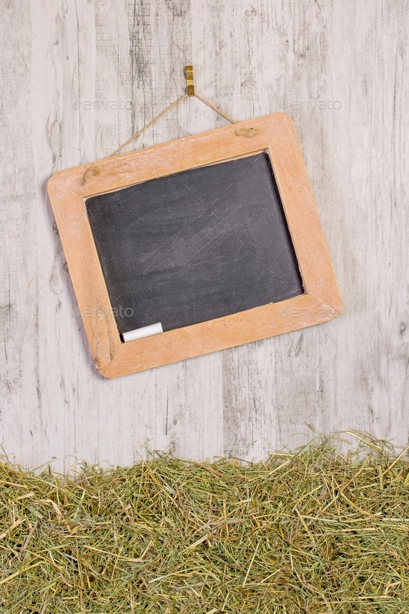 A Blank Chalkboard and Straw Grass - Stock Photo - Images